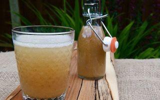 Blavod (Черная водка) — производители и состав напитка, особенности употребления, как сделать в домашних условиях