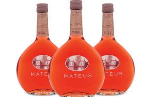 Вино Tokaji (Токай): винный рейтинг, популярные производители и как пить токайский алкогольный напиток