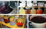 Вино из компота — лучшие способы изготовления основы для домашних алкогольных напитков