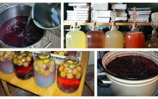 Малиновая настойка: польза и вред напитка, простые рецепты приготовления вкусного алкоголя, как правильно хранить и пить