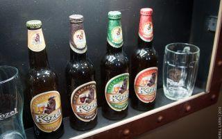 Велкопоповицкий козел: где производится, виды и крепость напитка, как пить и закусывать