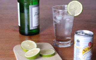 С чем пьют джин: как правильно пить в чистом виде и чем закусывать, рецепты коктейлей с можжевеловой водкой