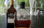 Ром Barcelo (Барсело): история бренда, описание напитка, как правильно выбрать и с чем пить