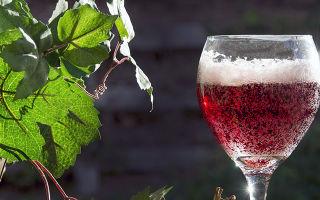 Ламбруско шампанское: история итальянского игристого вина и вкусовые особенности, как правильно выбрать