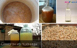 Самогон из пшеницы: подготовка ингредиентов и подробное описание приготовления напитка