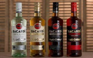 Ром Bacardi Carta Blanca (Бакарди Карта Бланка): история и описание напитка, как правильно выбрать напиток и отличить его от подделки