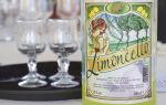 Как пить Лимончелло: что это такое, как подавать ликер и рецепты приготовления коктейлей