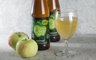 Сидр: состав, польза и вред напитка, история происхождения, как правильно выбрать и пить, способы приготовления дома