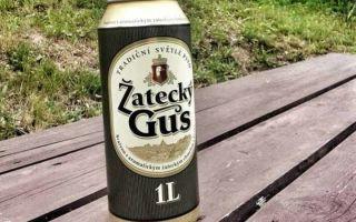 Zatecky Gus (Жатецкий Гусь) — особенности русского пива с чешским антуражем, вкусовые качества напитка