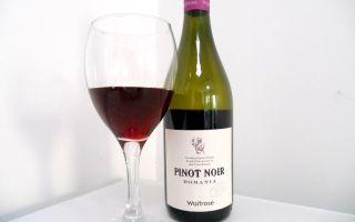 Пино нуар (pinot noir): описание вина из Бургундии, разновидности сладкого напитка, сорт винограда и особенности его выращивания