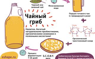 Напиток арак: состав и особенности изготовления, виды анисового алкоголя и способы употребления
