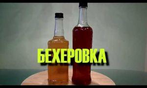Рецепт приготовления Бехеровки в домашних условиях из самогона