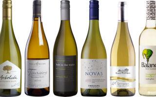Sauvignon Blanc (Совиньон Блан) — описание белого вина ,производитель и особенности изготовления, с чем сочетать