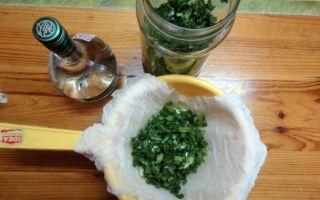 Настойка алоэ: полезные свойства, применение в домашних условиях и как правильно приготовить напиток