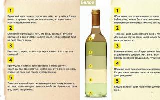 Красное сухое вино: рейтинг лучших производителей, критерии выбора качественного напитка и советы экспертов