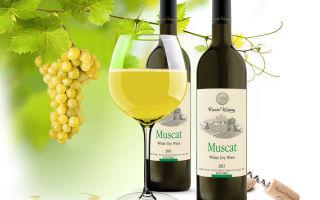 Вино мускат: история происхождения, производство и выдержка, как пить напиток