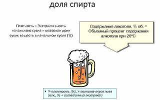 Плотность пива: калькулятор для измерения, связь с крепостью напитка, процесс приготовления пенного алкоголя