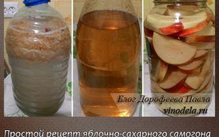 Самогон из яблок: ингредиенты и пропорции, технология сбраживания яблочного сусла